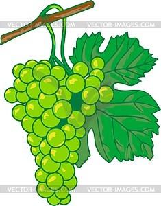 Grape clipart bunch grape Grapes clipart Collection black grapes