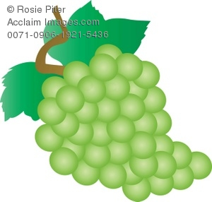 Grape clipart bunch grape Green Green Bunch Of Grapes