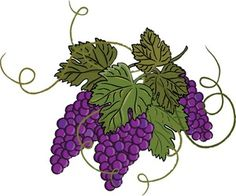 Grape clipart fancy Grapes Pinterest Art Grapes Photos