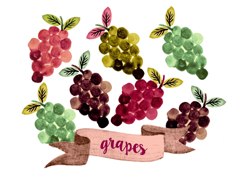 Grape clipart frut Watercolor fruit file a grapes