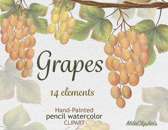 Grape clipart grape leaf From Vine clipart clipart instant