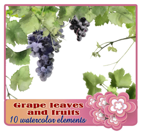 Grape clipart grape leaves Clipart vine clipart clipart