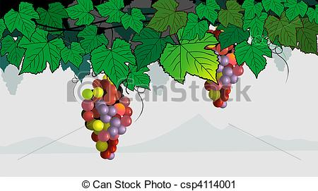 Grape clipart grape tree Of Grapes tree colourful