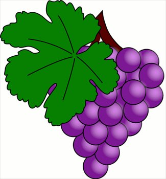 Grape clipart graphic Clip  Pictures Grapes Art