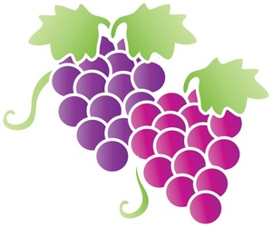 Grape clipart graphic  clipart Fruit Cluster clipart