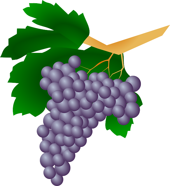 Grape clipart healthy food Pixel Sweet Fruit Farm Healthy