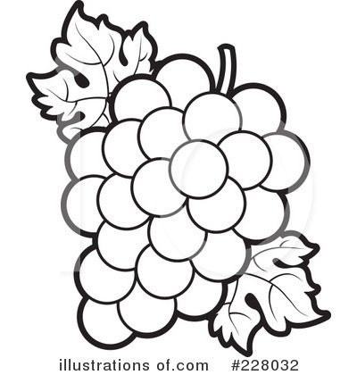 Black & White clipart grape Anatomy 460476913 Image Outline with