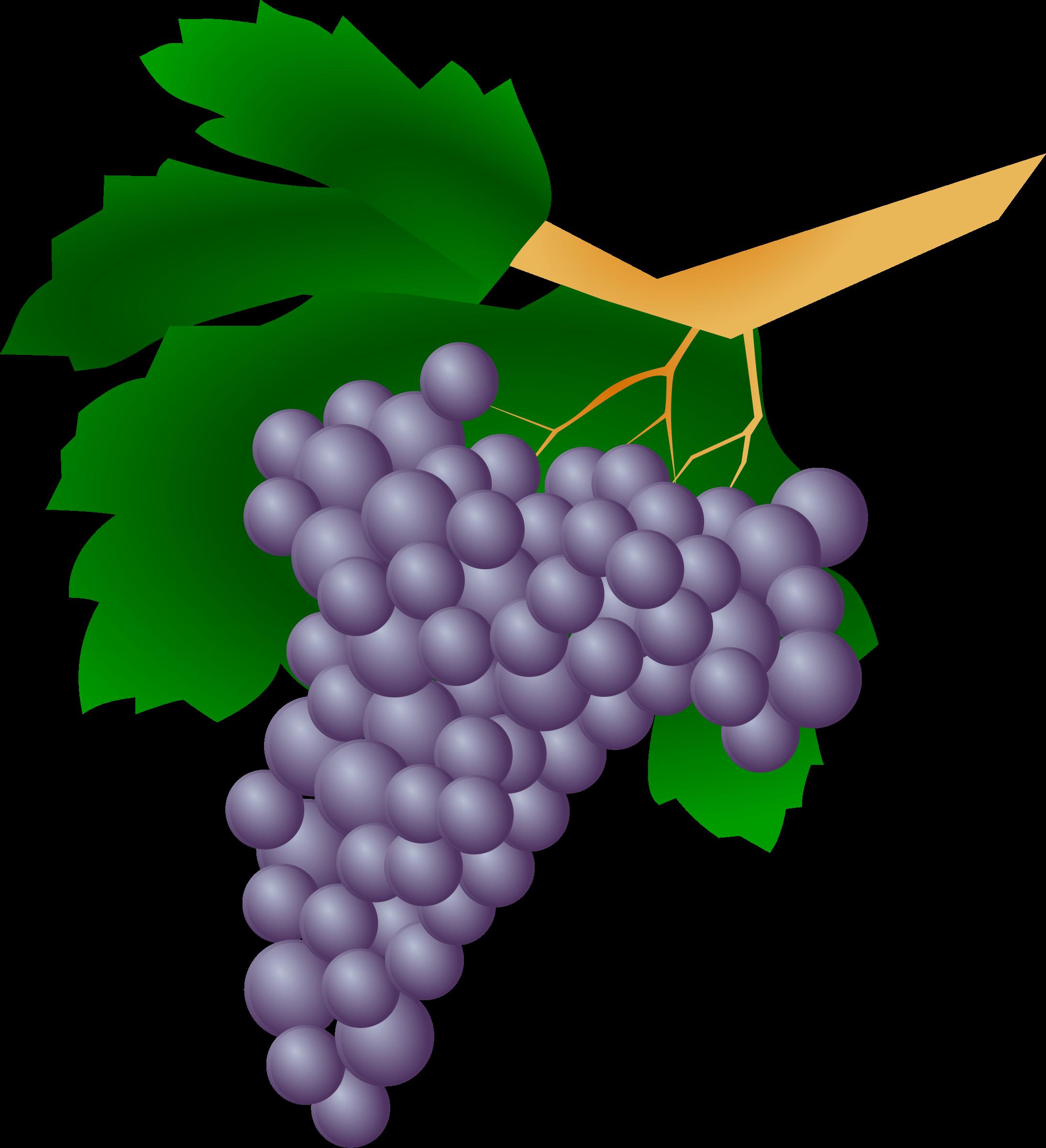 Grape clipart printable Printable Clipart Clipart Art Grapes