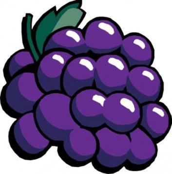 Grape clipart printable Printable Grapes Clipart Cool Grapes