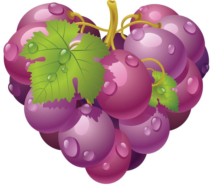 Grape clipart two ART FRUIT TWO CLIP Find