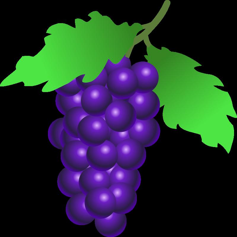 Grape clipart two VEGETABLES grapes FRUIT Pinterest CLIP