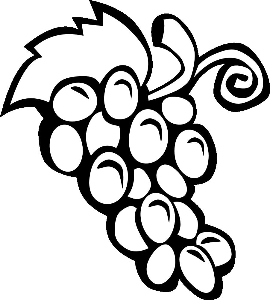 Panda Free Grapes Clipart Clipart