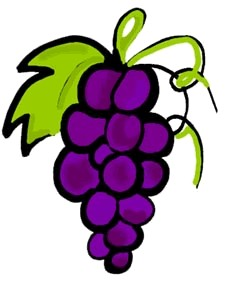 Grapes high cliparts you quality