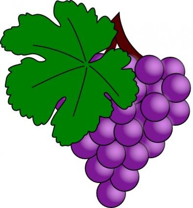 Grape clipart vector Grape  Clipart