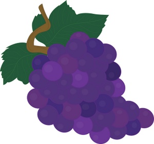 Grape clipart violet Fruit Grapes Fruit Purple Clipart
