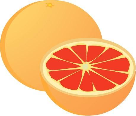 Grapefruit clipart Panda Clipart Clipart grapefruit%20clipart Free
