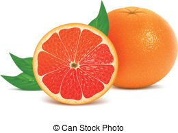 Grapefruit clipart Clip leaves illustration with
