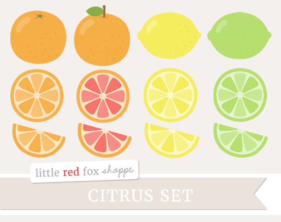 Grapefruit clipart orange wedge Grapefruit Citrus Clipart Clipart Clip