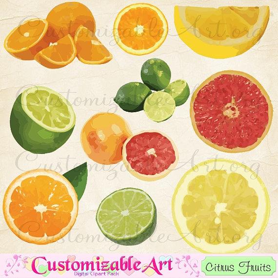 Orange (Fruit) clipart sour food Art Clip Art Images from