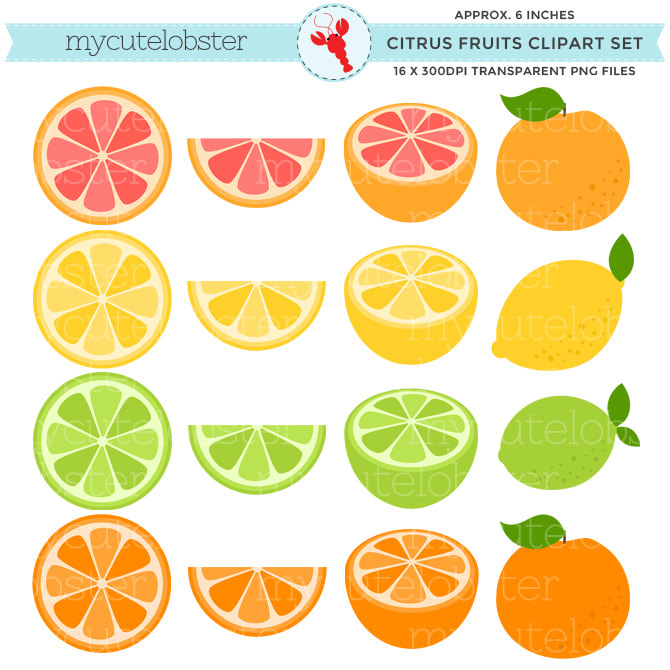 Lemon clipart small Clipart download collection Clipart Pink