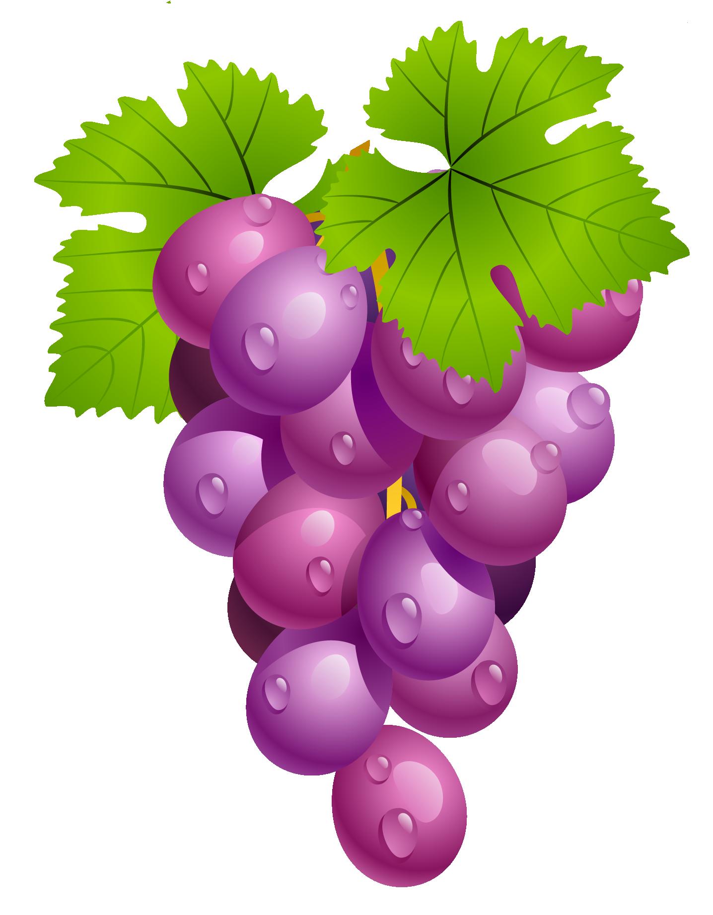 Grape clipart Grapes Cliparting 3 Clip grapes