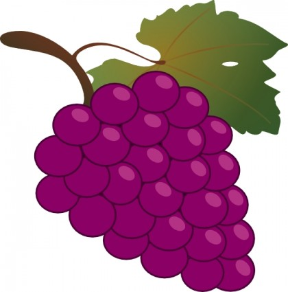 Grape clipart grape leaves Clipart Art Images Grapes Free