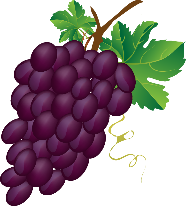 Grapes clipart Of can clip a or