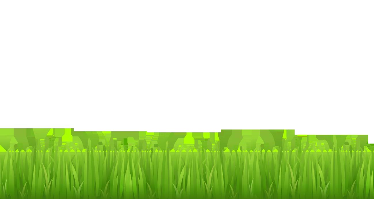 Grass clipart Grass clipart Grass bottom art