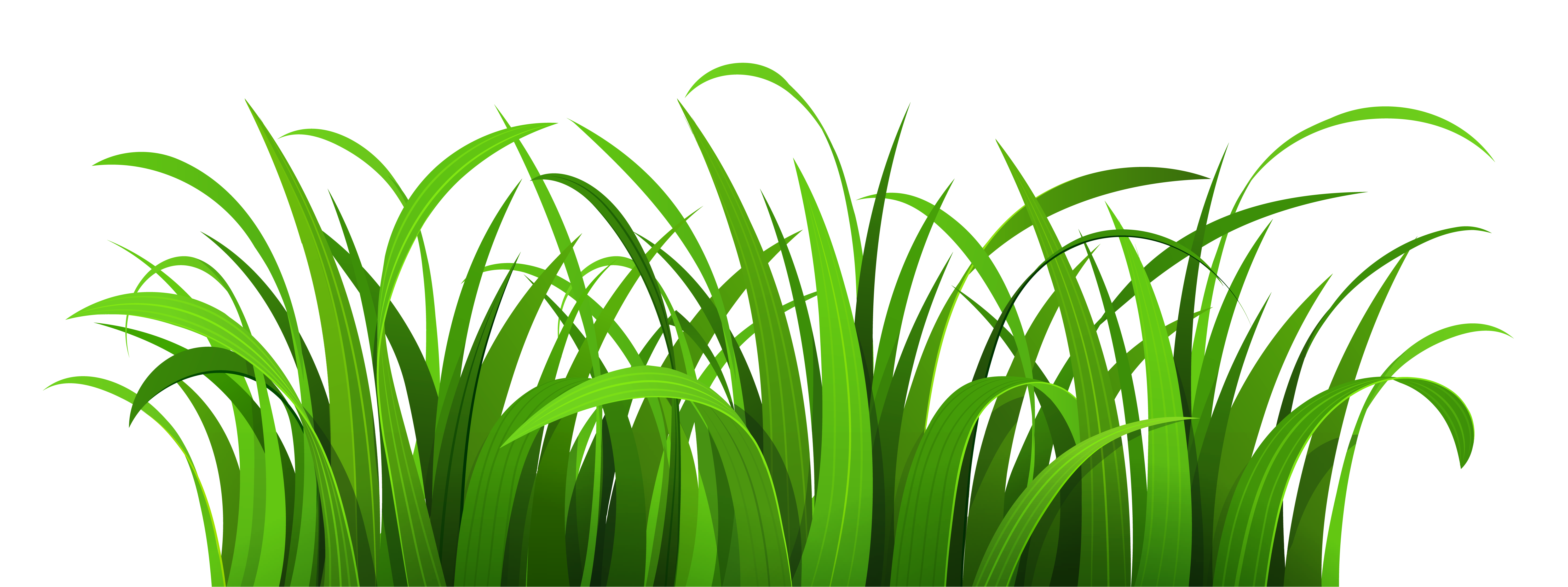 Lawn clipart Grass Clipart Images Clipart Green