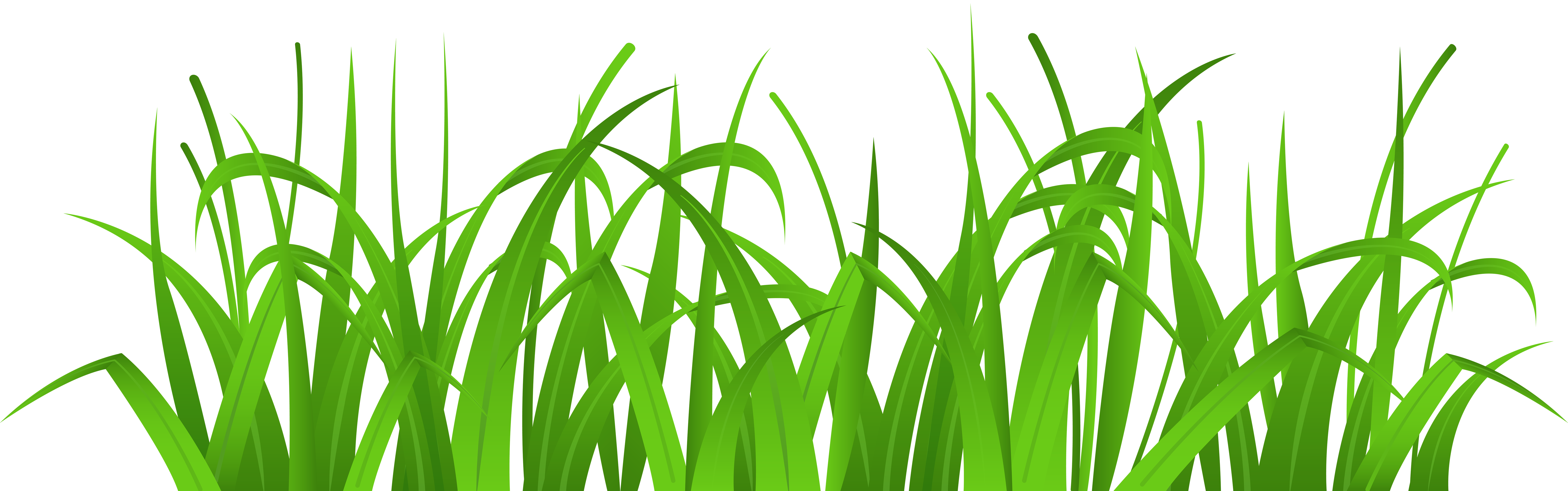 Bug clipart angry Grass Clipart clipart Clip &