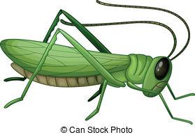 Grasshopper clipart  A Grasshopper a grasshopper