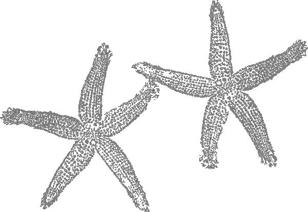 Grey clipart starfish Clip at art Art Clker