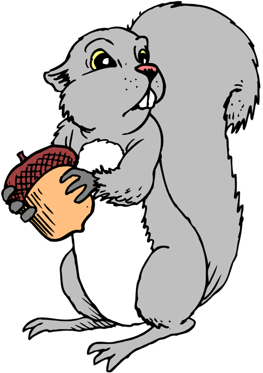 Nut clipart grey squirrel Squirrel Clipart Squirrel Clipart Free