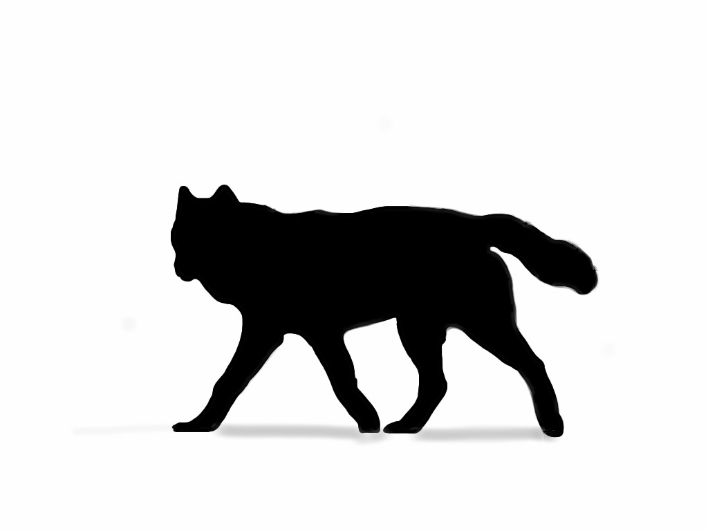 White Wolf clipart monochromatic Cool Search wolf skin art