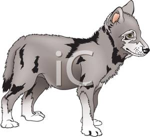 Wolf clipart wolf pup Cute Cute Art Image: Image: