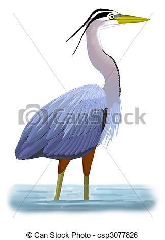 Great Blue Heron clipart Heron Ardea Stock Blue csp3077826