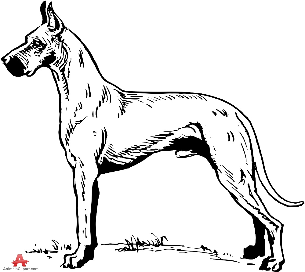Great Dane clipart Dane Dane Great Design Clipart