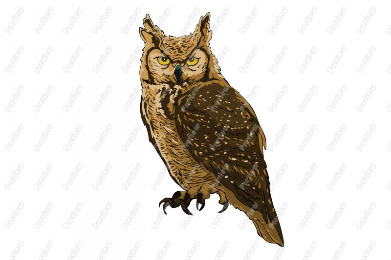 Great Grey Owl clipart Art Owl Art Royalty Character
