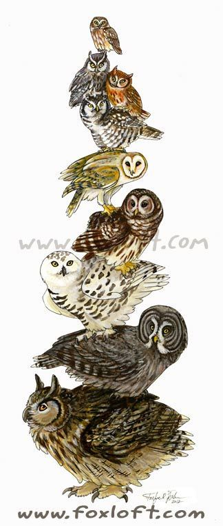 Barred Owl clipart labyrinth Geometric  and tattoos 20+