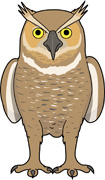 Great Horned Owl clipart Views File Type 91; Owl