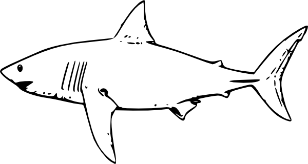 Drawn shark stencil Clipart Shark great%20white%20shark%20clipart Great White
