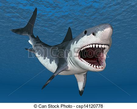 Shark clipart great white shark #3
