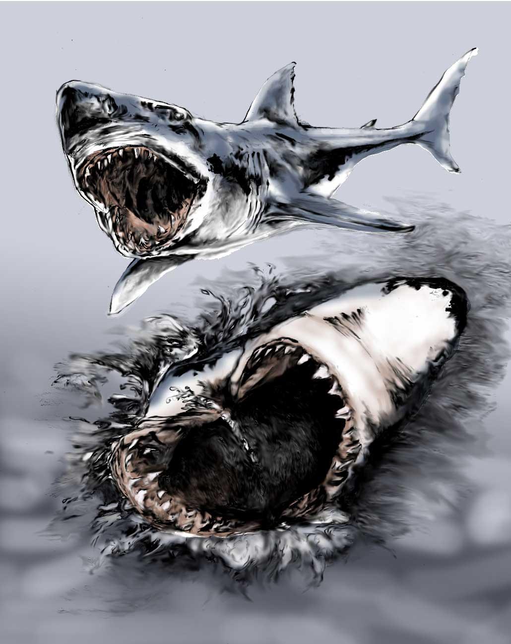 Drawn shark symbol Ideas: tattoo Tatoos design drawings