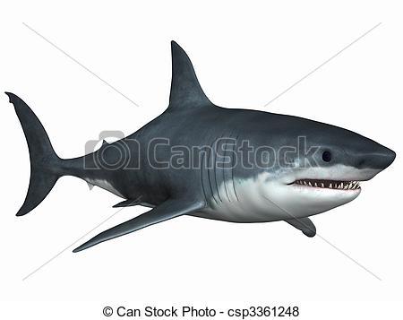 Bull Shark clipart illustration Great Stock Great Great Shark