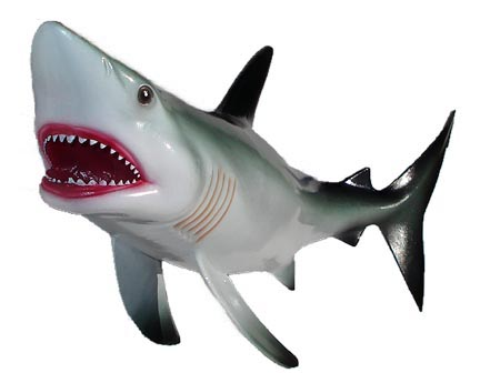 Bull Shark clipart jaws Images Great Free Panda Clipart