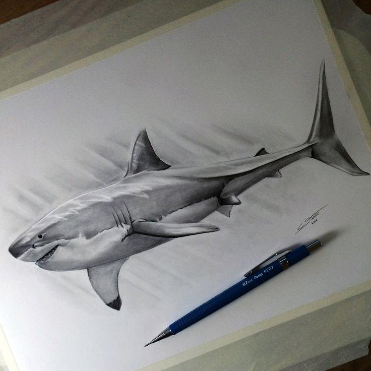 Tiger Shark clipart hand drawn #4