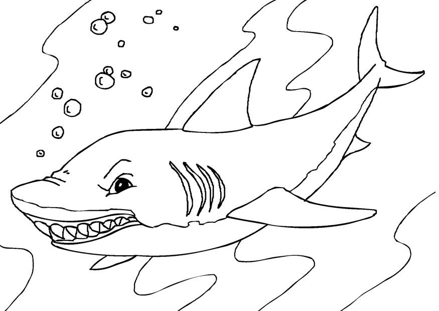 Sharkwhale clipart coloring #3