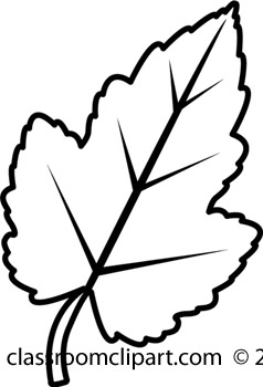 Black & White clipart leaf White Clipart Black And White