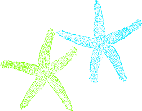 Stars clipart soccer ball Green starfish Clipart photo#4 Starfish