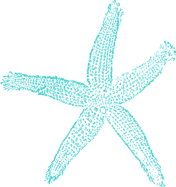 Simple clipart starfish Image Starfish Download com Turquoise